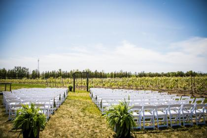 empty wedding ceremony with a vineyard in the background